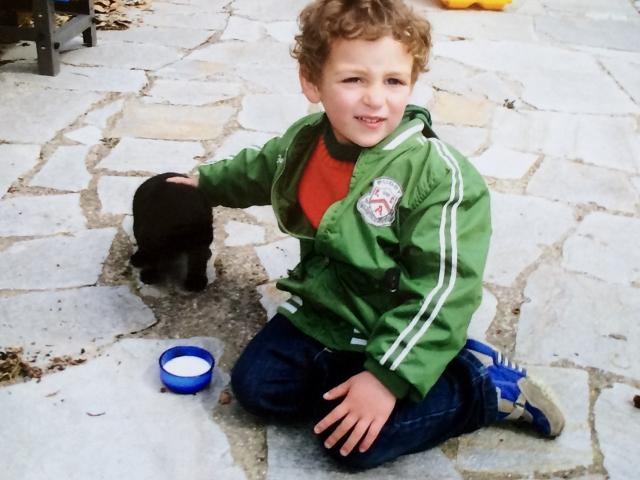 Cucciolo o gattino (2) (640x480)