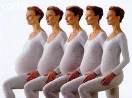 Il quinto mese di gravidanza