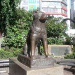 Hachiko il cane che aspettava