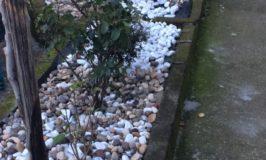 Come sistemare un piccolo giardino usando le pietre