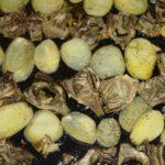 Teglia di carciofi e patate al forno